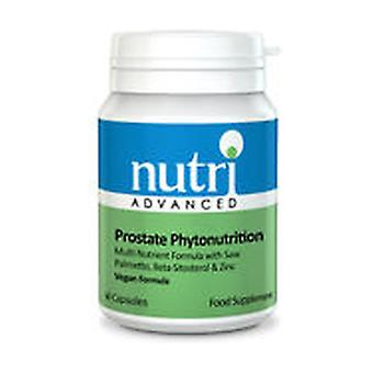 Prostate Phytonutrition 60 capsules