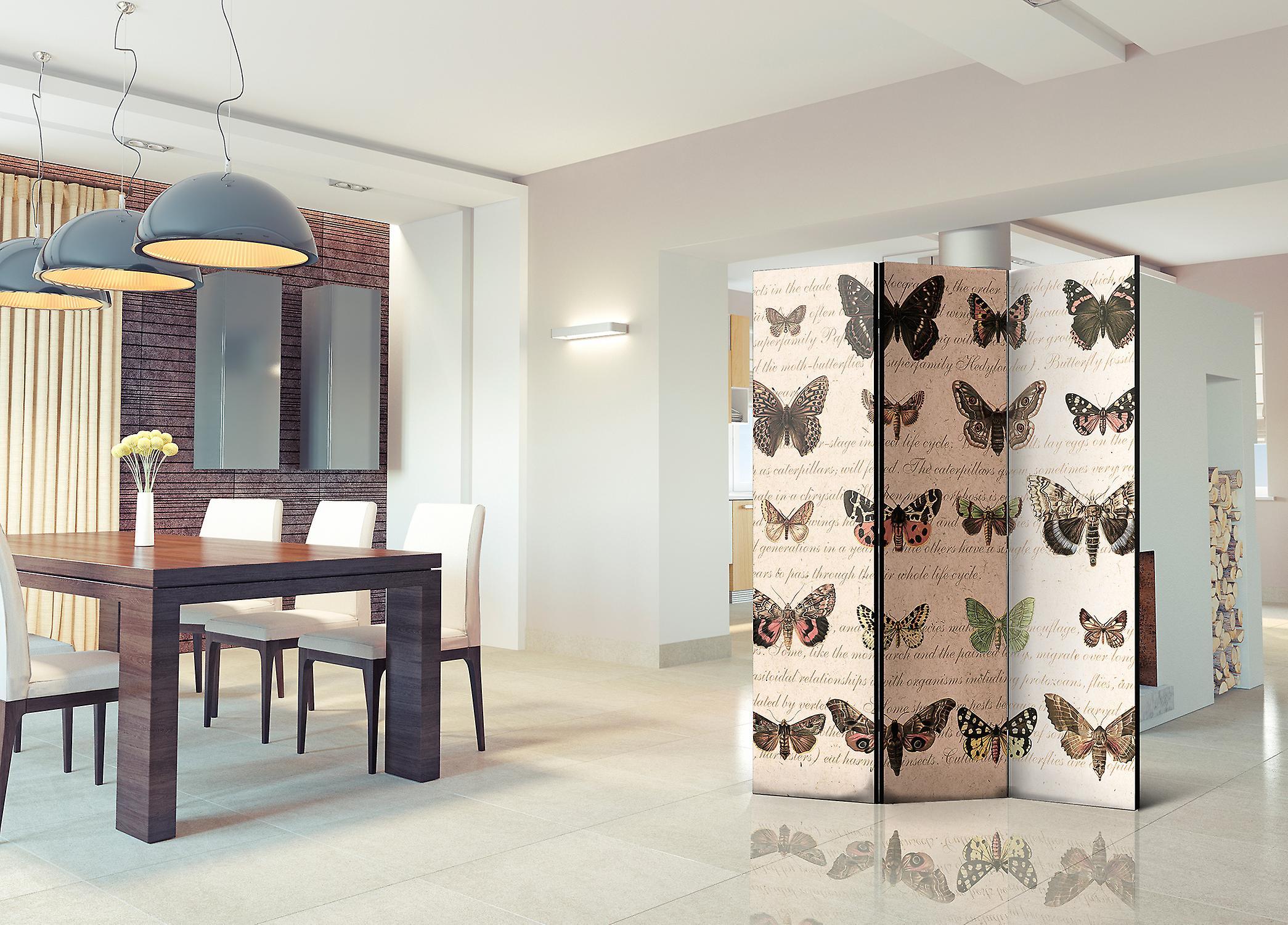 Paravent 3 volets - Retro Style: Butterflies [Room Dividers]