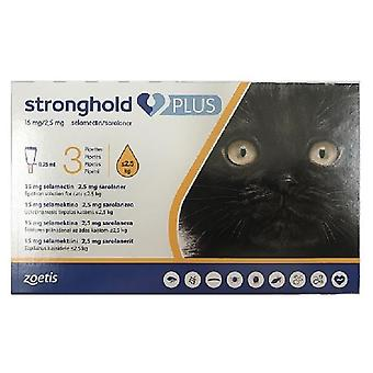 Stronghold Plus for Small Cats less than 2.5 kg (5.5 lbs) - 3 pack