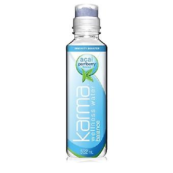 Karma Water Acai Pomberry Balance-( 532 Ml X 12 Bouteilles )