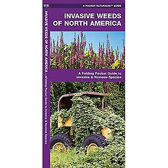 Invasive Weeds of North America: An Introduction to Problematic Species (Pocket Naturalist Guides)