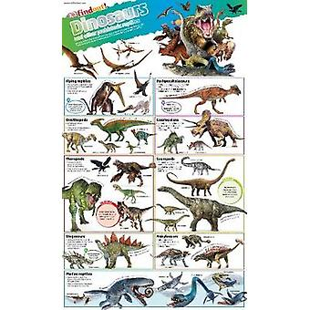 DKfindout Dinosaurs Poster