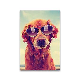 بارد الذهبي المسترد ملصق - صورة من قبل Shutterstock