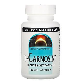 Source Naturals, L-Carnosine, 500 mg, 60 comprimés