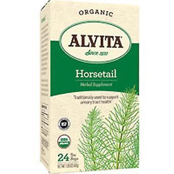 Alvita Teas Horsetail Tea, 24 Bags