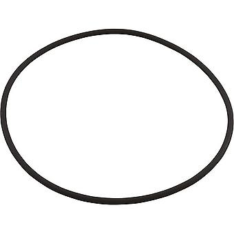 Astral AST7231400040 Cover O-Ring for Multiport Valves