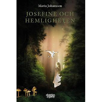 Josefine und das Geheimnis 9789189308787