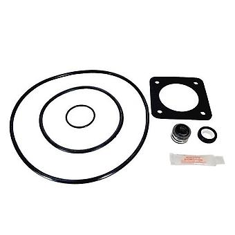 Aladdin GO-KIT54 Pump Repair Kit for Sta Rite Duraglass, Maxiglass, P2R, P2RA