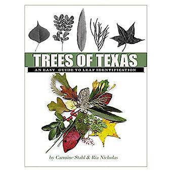Träden i Texas: en enkel Guide till Leaf identifiering