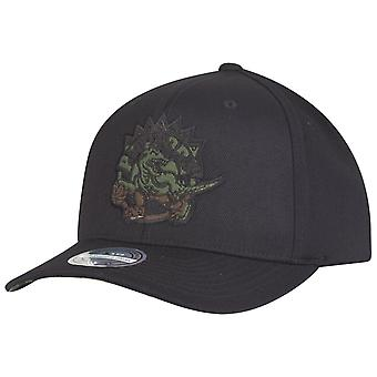 Mitchell & Ness 110 Flexfit Snapback Cap - Toronto Raptors