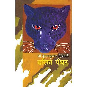 Dalit Panther  Bhoomika ani Chalawal by Limbale & Sharankumar