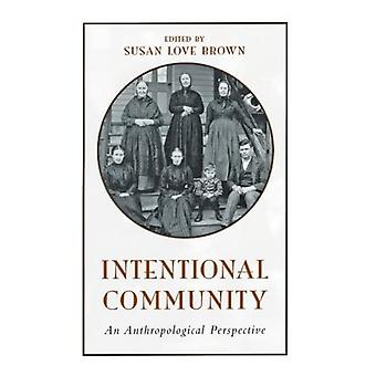 Intentional Community: An Anthropological Perspective (Anthropological studies of contemporary issues)