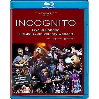 Incognito - Live in London: The 30th Anniversary Concert [Blu-ray] USA import
