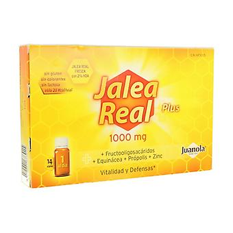 Royal Jelly Plus Vitality and Defenses 14 vials