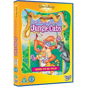 Jungle Cubs Born to Be Wild DVD (2003) cert U Region 2