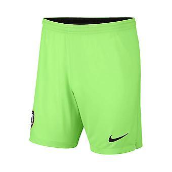 2018-2019 Chelsea Home Nike Goalkeeper Shorts (Green) - Kids