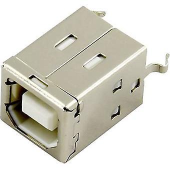 USB B asennettu pistorasia, pystysuora pystysuuntainen DS1099-01-WN0 DS1099-01-WN0 Connfly Sisältö: 1 kpl