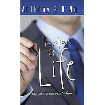 Ensambladuras de las lecciones que puede beneficiarse... por Ng y Anthony S. B.