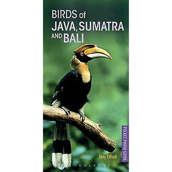 Birds of Java Sumatra and Bali by Tony Tilford