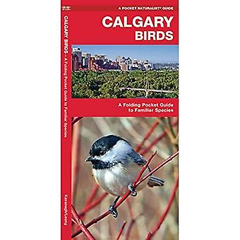 Calgary Birds: An Introduction to Familiar Species (Pocket Naturalist Guides)