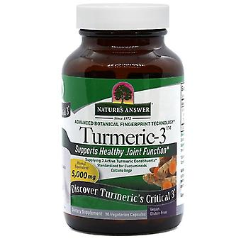 Nature's Answer Turmeric-3 5000mg Caps 90 1561