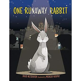 One Runaway Rabbit by David Metzenthen - 9781911631484 Book