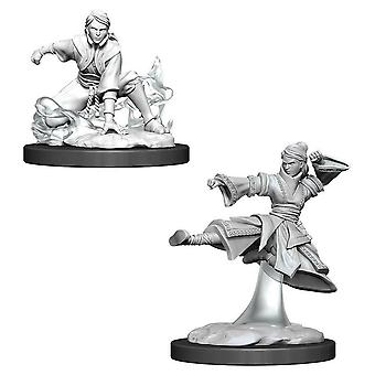 D&D Nolzur's Marvelous Unarented Minis Female Human Monk