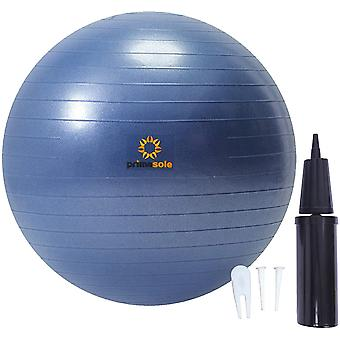 Gerui 【Amazon.com Limited Brand】 Exercise Ball (65cm Indigo Blue) for Stability, Balance, Fitness With
