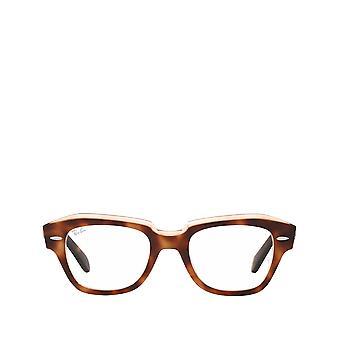 Ray-Ban RX5486 havanna läpinäkyvillä vaaleanpunaisilla unisex-silmälasilla