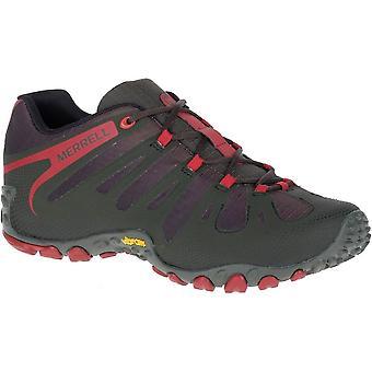 Merrell Chameleon II Flux J598317 trekking all year men shoes