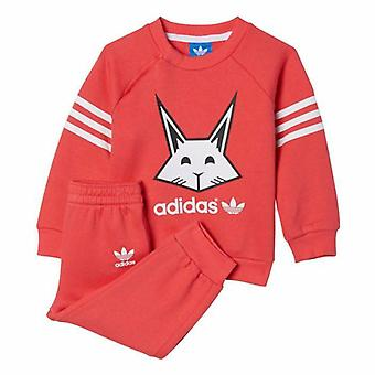 Adidas Infant Girls Rabbit Full Tracksuit