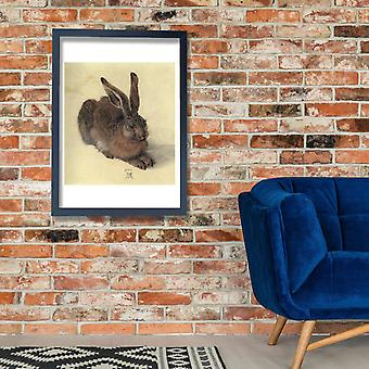 Albrecht Durer - Young Hare Poster Print Giclee