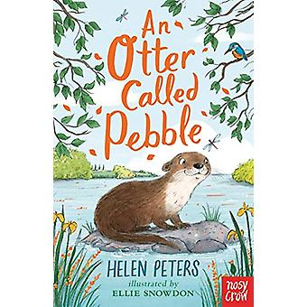 An Otter Called Pebble - 9781788001564 Book