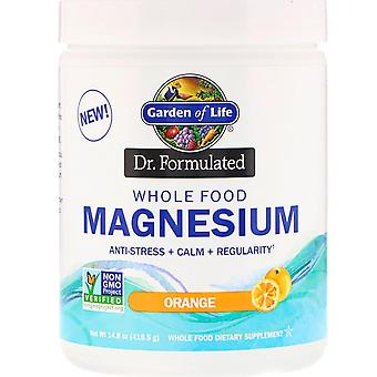 Garden of Life, Dr. Formulated, Whole Food Magnesium Powder, Orange, 14.8 oz (41