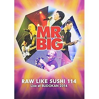 Mr.Big - crudo como Sushi 114 + 112 importación USA Deluxe Edition [DVD]