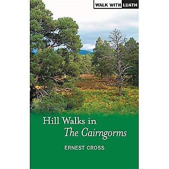 Hill wandelingen in de Cairngorms (lopen met Luath)