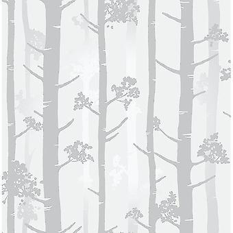 Silver Grey Birch Tree Fond d'écran Metallic Woodland Paste Wall Fine Decor Sydow