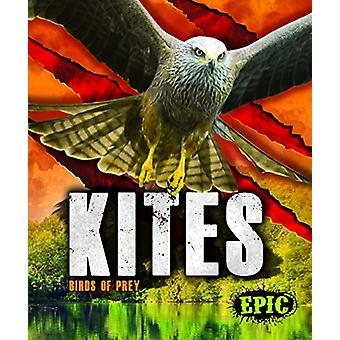 Kites by Nathan Sommer - 9781626178779 Book