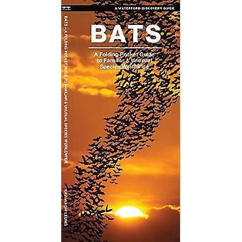 Bats - A Folding Pocket Guide to the Status of Familiar Species by Jam