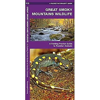Great Smoky Mountains Wildlife (Pocket Naturalist Guides)