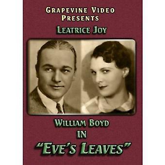 Importer des USA [DVD] feuilles d'Eve (1926)