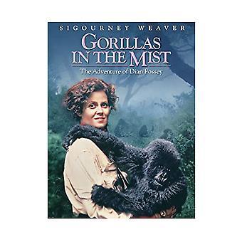 Gorillas in the Mist DVD