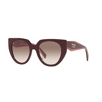 Prada SPR14W VIY1L0 Garnet/Clear Gradient Brown Sunglasses