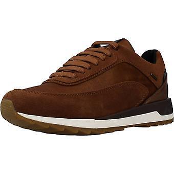 Geox Sport / Sneakers D Aneko B Abx Kleur C6777