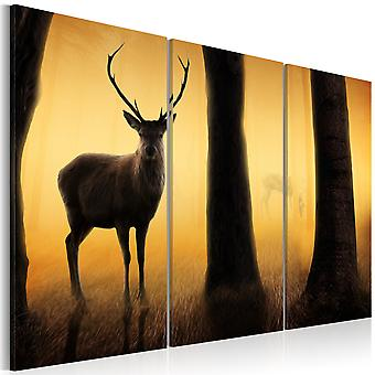 Canvas Print - Forest guard