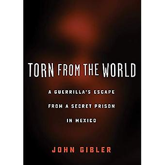 Torn from the World: A Guerrilla's Escape from a Secret Prison in Mexico (City Lights Open Media)