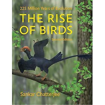 Fremveksten av fugler: 225 millioner år med evolusjon