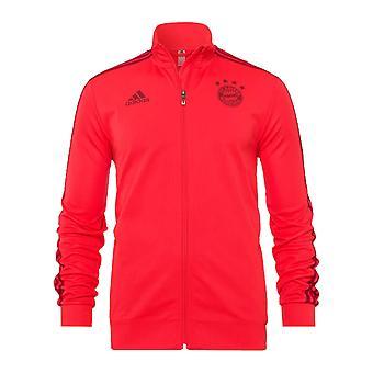 2019-2020 Bayern München Adidas training Jacket (rood)
