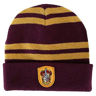 Harry Potter Gryffindor House pipo