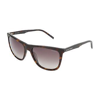 Polaroid Original Men Spring/Summer Sunglasses - Brown Color 34023